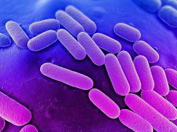 i-5-batteri-piu-pericolosi-al-mondo
